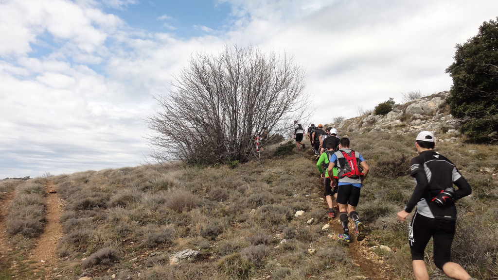 Trail SB organisateur (2)